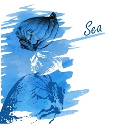 Handdrawn seashells on a watercolor sea background vector image