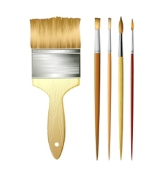 Paint Brushes isolated on white vector image