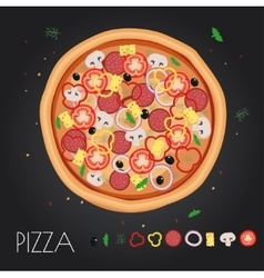 Pizza restaurant menu Ingredients for cafe vector image