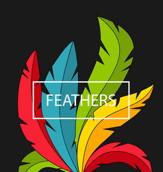 creative background with colorful feathers vector image vector image