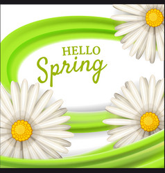 hello spring daisies flowers background cartoon vector image