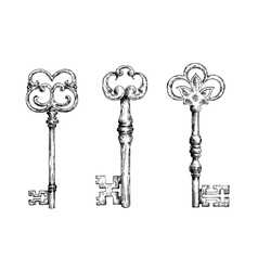 Isolated medieval victorian forged keys sketches vector image