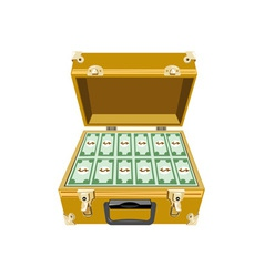 Money in Briefcase vector