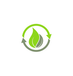 recycle green leaf ecology logo vector image