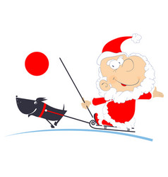 Santa claus rides on the sled dog isolated vector