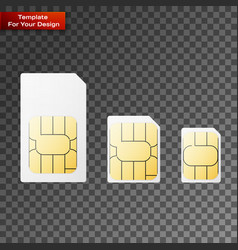 set sim cards different sizes vector image