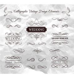 Wedding ornaments decorative elements vintage vector image