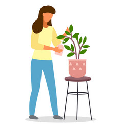 young woman florist pouring watering decorative vector image