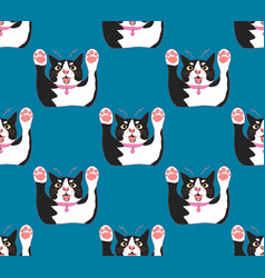 cute black and white cat attack on indigo blue vector image vector image