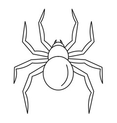 Black widow spider icon outline style vector