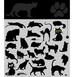 Collection of cats vector