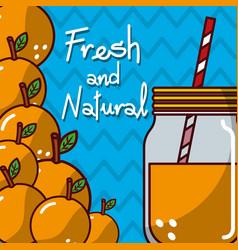 Glassware jar juice orange fruit fresh and natural vector
