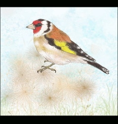 Goldfinch on dry flowers vector