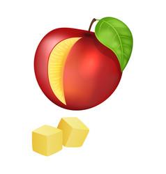 Sliced and diced peach vector