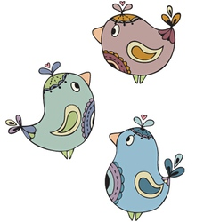 paisley birds vector image