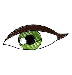 drawing female eye vision optic cartoon vector image