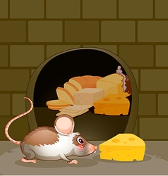 a hole at wall with bread and cheese vector image