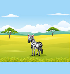 african landscape with zebra vector image