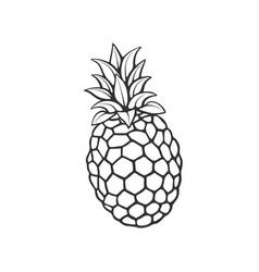 doodle pineapple vector image