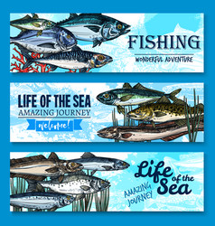 Fish banners for sea fishing adventure vector