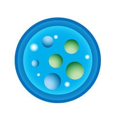 schematic a petri dish vector image