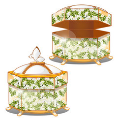 set of closed and opened ornate gift boxes with vector image