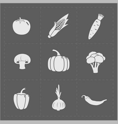 white vegetable icon set on grey background vector image