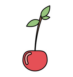 colorful vegetable cherry icon vector image