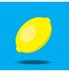 lemon with soft shadow vector image
