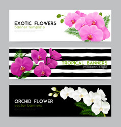 Blooming orchids realistic banners set vector