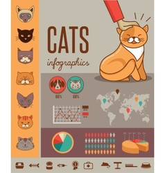 Cat infographics with icons set vector image