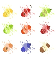 Fruits Cut Bursting With Juice vector