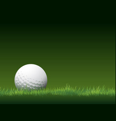golf tournament background place for text vector image