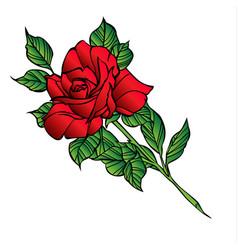 Rose flower red cartoon 07 vector