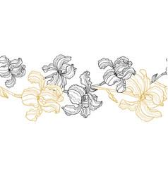 seamless floral border iris flowers vector image
