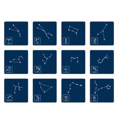 set with zodiac symbols and zodiac constellation vector image