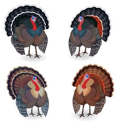Collection of Turkeys for your design vector image vector image
