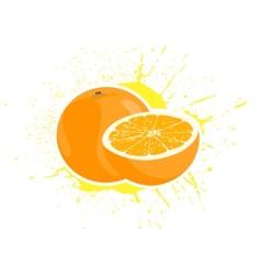 yummy oranges vector image