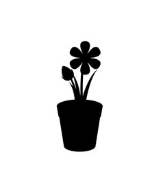 black silhouette of flower in the pot isolated on vector image