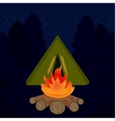 camp campfire at travel night vector image