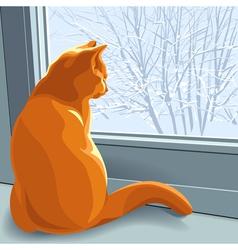 Cat at window vector