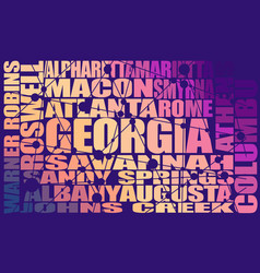 georgia state cities vector image