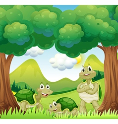 Three turtles in the woods vector