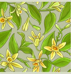 Vanilla pattern vector
