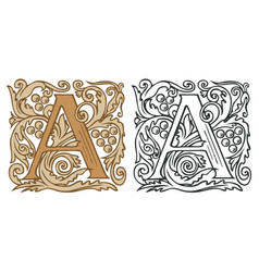 Vintage initial letter a with baroque decoration vector