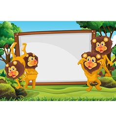 White board and lions in the forest vector image