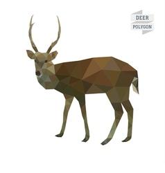 Deer polygon vector