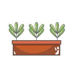 ecological plants with leaves inside flowerpot vector image
