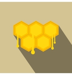 Honeycomb with drops flat icon vector image