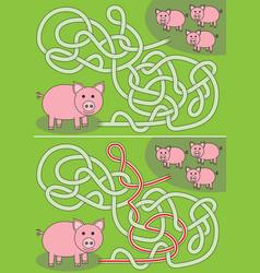 Pigs maze vector